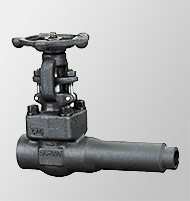 Gate Valve (Extended Body Forged)